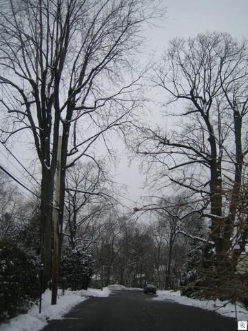 Feb 26 2007 020