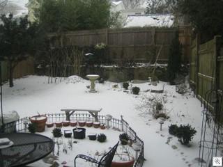 Snowstorm 001