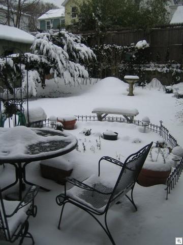 Feb 26 2007 003
