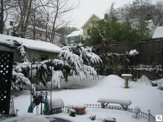 Feb 26 2007 011