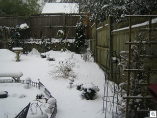 Feb 26 2007 009